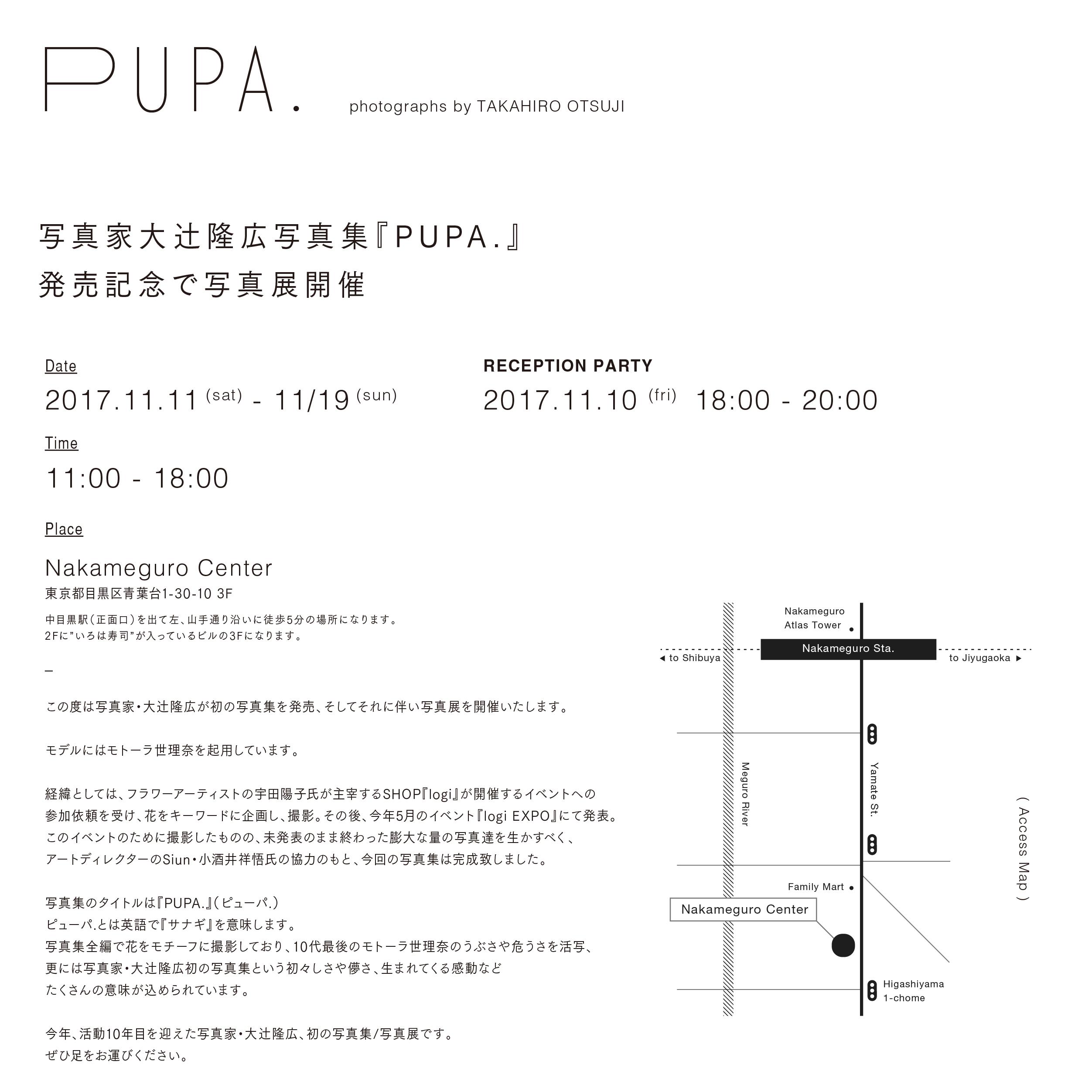 pupa_dm1026